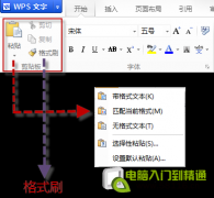 WPS教程:剪切板+连续格式刷