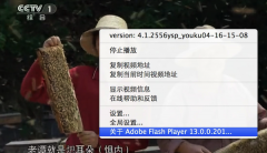 Mac电脑如何查看 Flash Playe