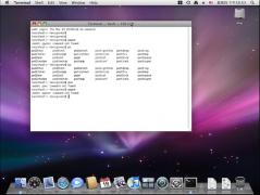 Mac终端删除文件 使用Mac终端卸载软件教程