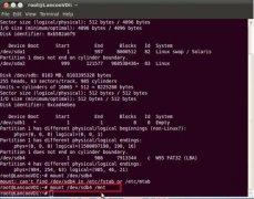 Linux系统中把文件拷贝到U盘的方法
