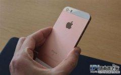 如何辨别iPhone SE的真假?iPhone SE辨别方法教程
