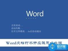 为什么所有Word文档都打不开